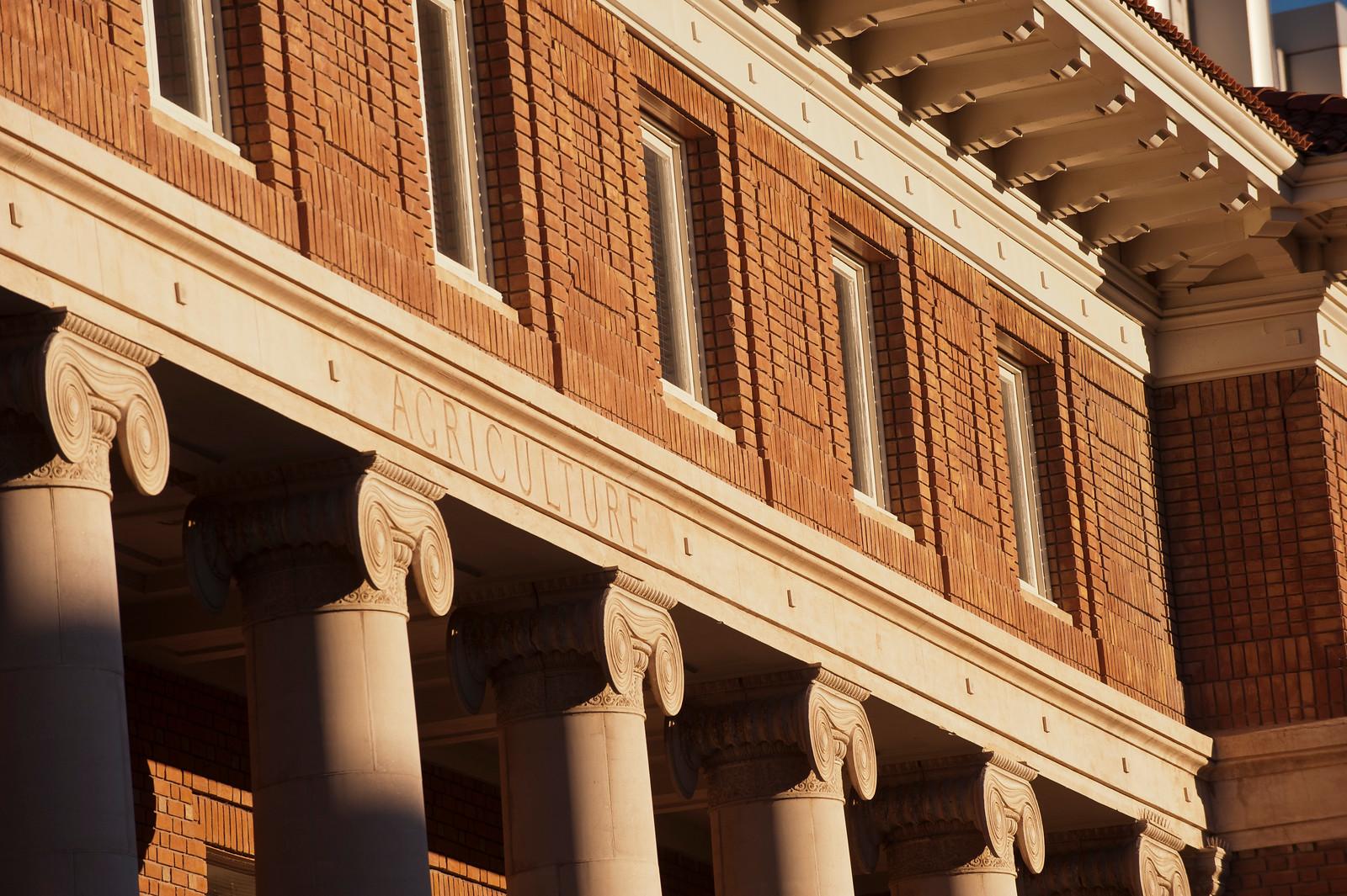 Photo of campus architecture